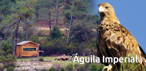 entrada_aguila_imperial